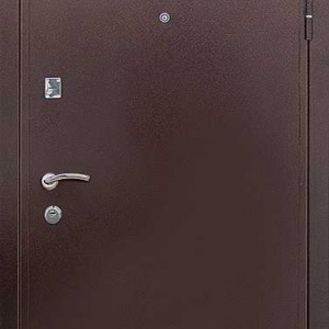 Порошковая дверь DR209
