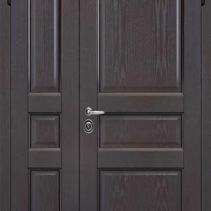Двустворчатая дверь DR403
