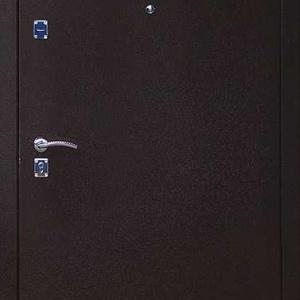 Порошковая дверь DR124